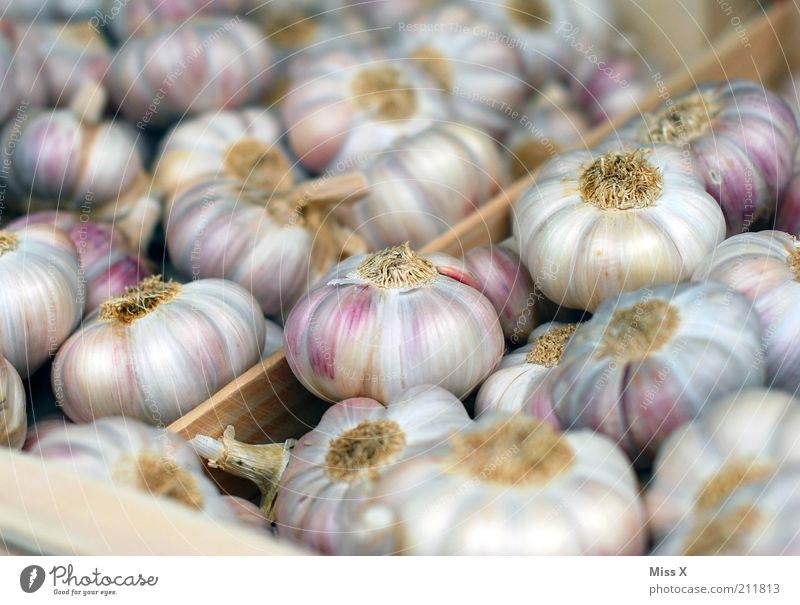 Stinker Gesundheit Lebensmittel frisch Ernährung viele Gemüse Kräuter & Gewürze Duft Bioprodukte Geruch Vegetarische Ernährung anbieten Knolle Knoblauch stinkend Knoblauchknolle
