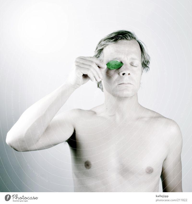 blattwerk maskulin Mann Erwachsene Gesicht Auge 30-45 Jahre Kunst Umwelt Natur Pflanze Blatt nachhaltig Zufriedenheit Umweltverschmutzung Umweltschutz nackt