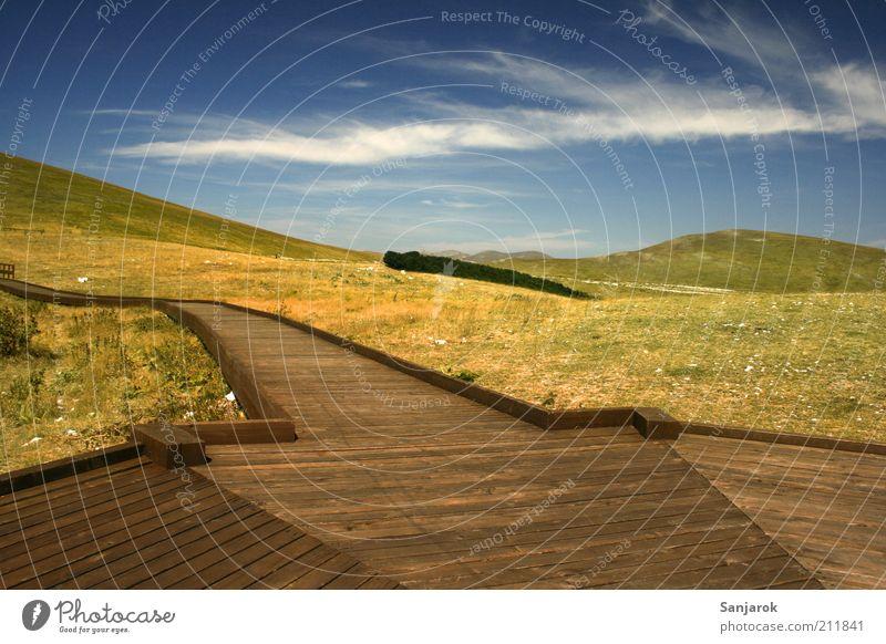 Holzsteg Umwelt Natur Landschaft Wolken Sommer Herbst Gras Steppe Hügel Holzbrett Plattform natürlich Einsamkeit Tourismus Umweltschutz Ferien & Urlaub & Reisen