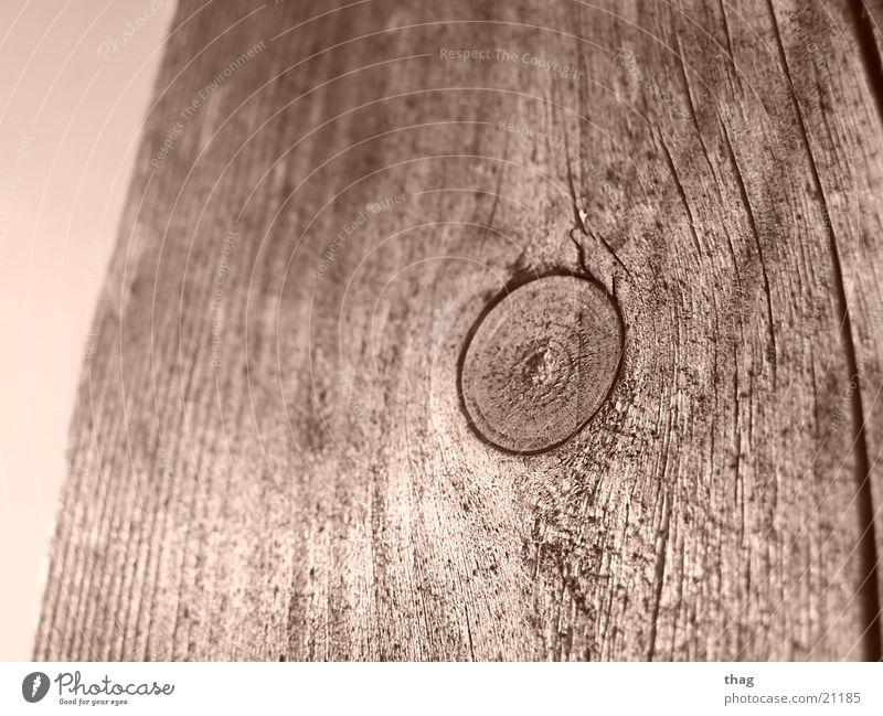 von der mitte aus Holz Baumrinde Balken Ast Sepia Zweig Baumstamm