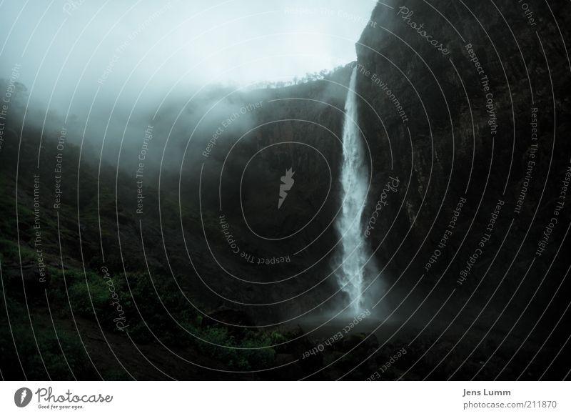 Torrent Ferien & Urlaub & Reisen Nebel Wasserfall kalt blau grün Dunst Felswand Schlucht Gischt Baum Einsamkeit Farbfoto Menschenleer Weitwinkel ungemütlich