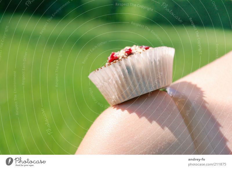 Muffin Schulter Schönes Wetter Gras lecker süß grün rot Freizeit & Hobby Törtchen Ernährung Dessert Picknick Kuchen Süßwaren Kaffeepause Vegetarische Ernährung