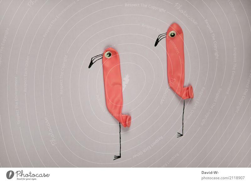 Spaßvögel Kunst Künstler Ausstellung Theaterschauspiel Umwelt Natur Tier Vogel Flamingo Zoo Streichelzoo 2 Tierpaar beobachten Kommunizieren einzigartig Neugier
