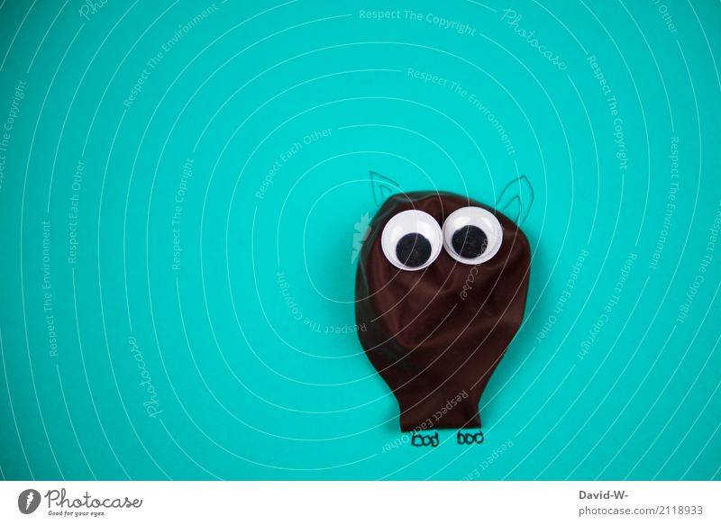komischer Kauz Mensch Jugendliche Erholung Tier ruhig Freude Leben Lifestyle Auge lustig Stil Kunst braun Vogel Kindheit groß
