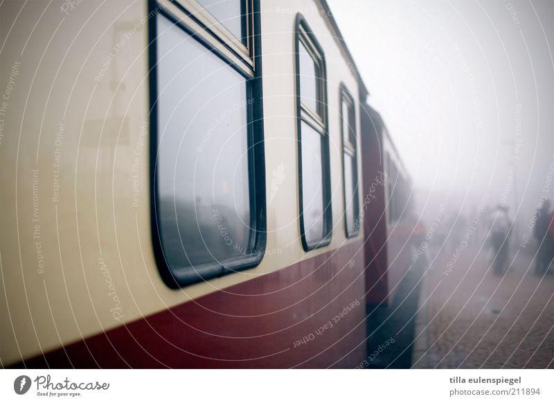 ziel unbekannt Ferien & Urlaub & Reisen Ausflug Freiheit Sightseeing Herbst schlechtes Wetter Nebel Verkehrswege Personenverkehr Bahnfahren Schienenverkehr