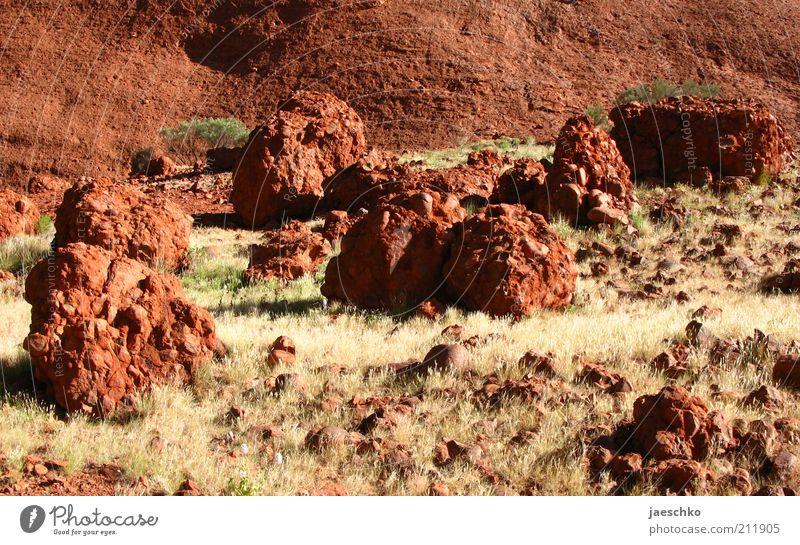 Red Planet rot Gras Stein Wärme Landschaft Erde wild heiß trocken Urelemente bizarr falsch Surrealismus Dürre Steppe