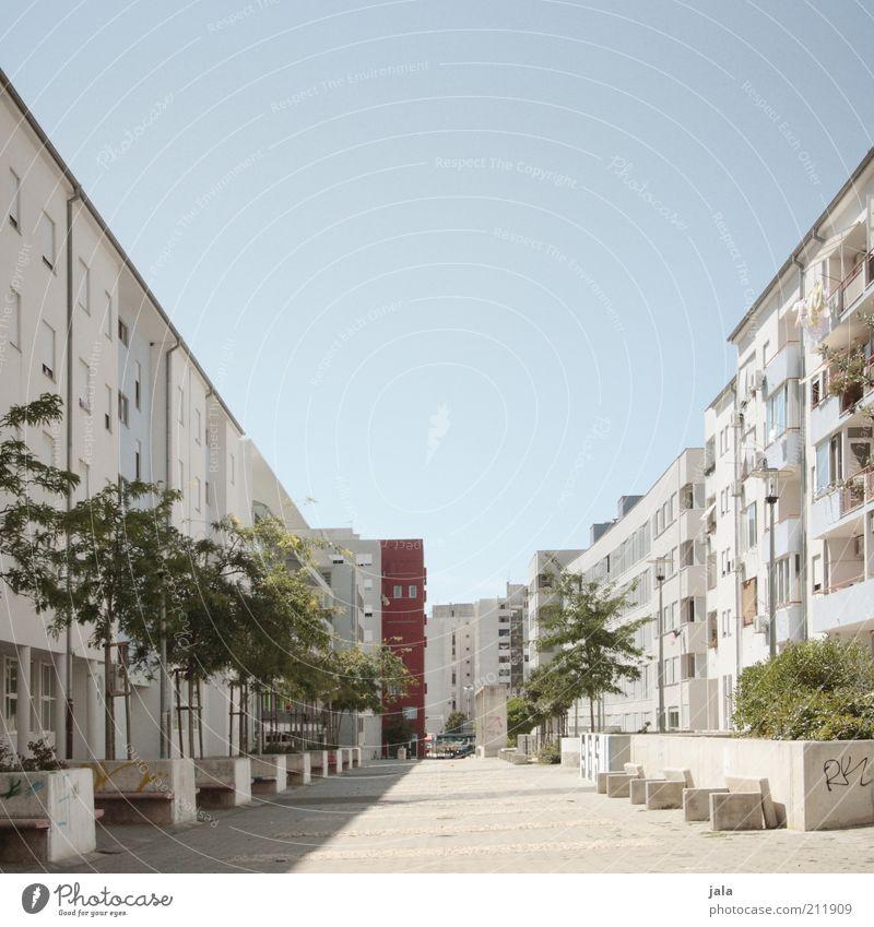 zadar Himmel Baum Stadt Pflanze Haus Wand Mauer Wege & Pfade Gebäude Architektur Straßenverkehr Beton Fassade Platz Sträucher Asphalt