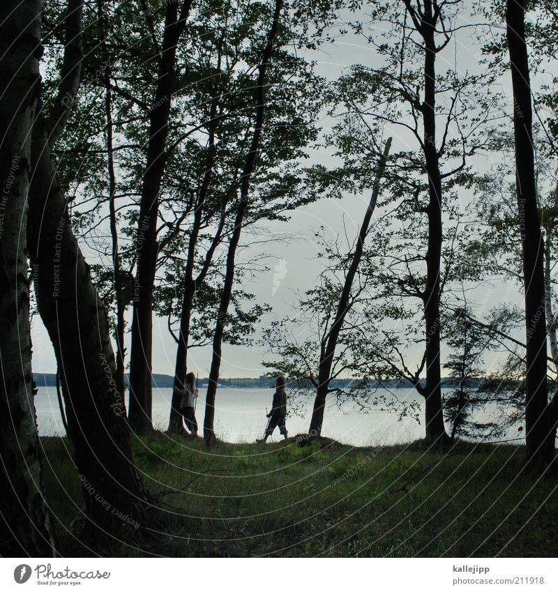 hänsel und gretel Mensch Natur Wasser Ferien & Urlaub & Reisen Baum Sommer Pflanze Meer Wald Landschaft Küste gehen Freizeit & Hobby wandern Tourismus Ausflug