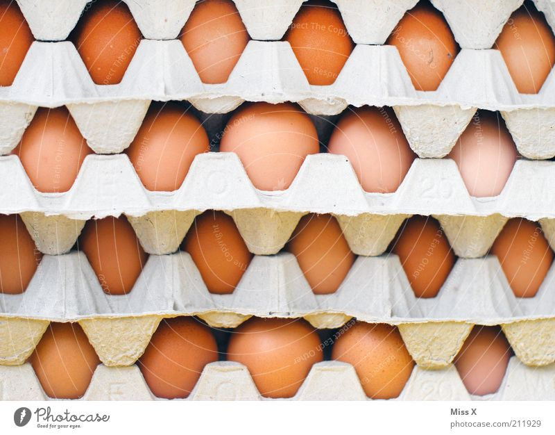 Eier Lebensmittel Ernährung rund Eierkarton Karton Stapel Farbfoto Nahaufnahme Muster Menschenleer Ware Tag