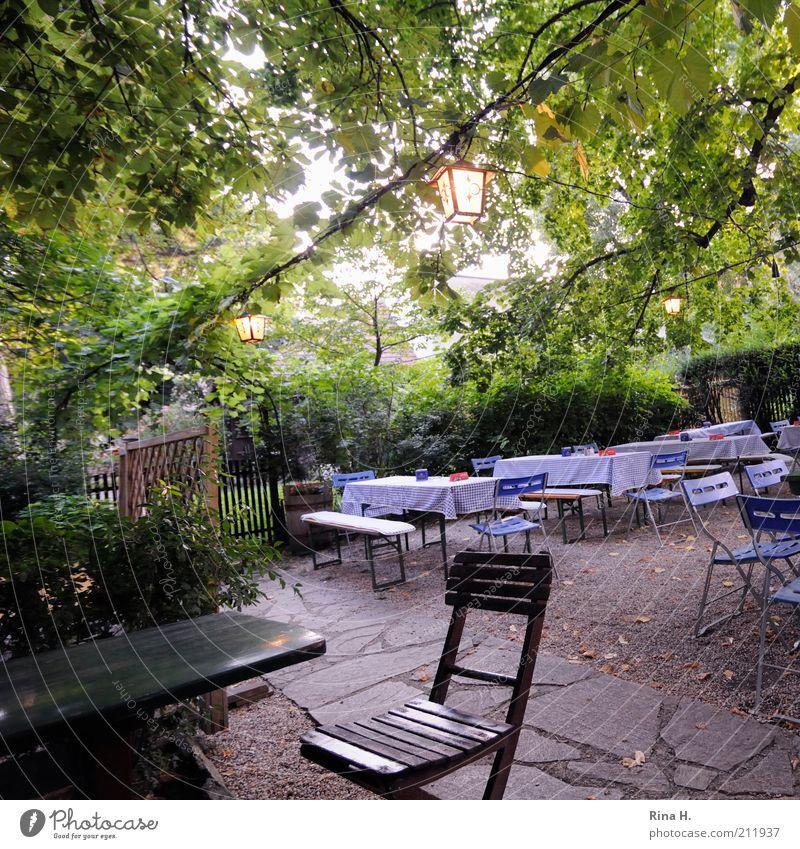 Warten grün Sommer ruhig Garten warten Tisch leer Lifestyle Stuhl authentisch einfach Restaurant Laterne gemütlich Österreich