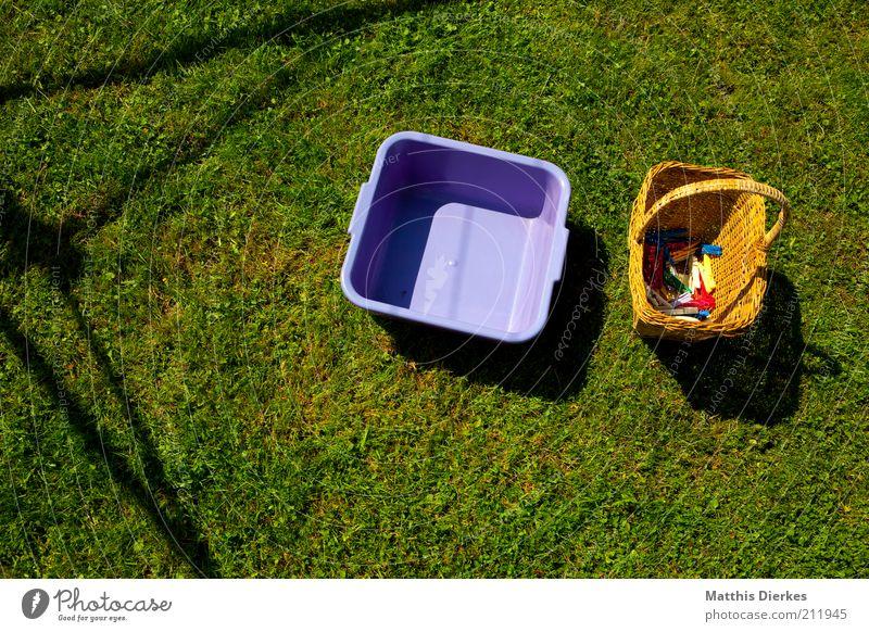 Wäsche Natur Arbeit & Erwerbstätigkeit Wiese Luft Umwelt leer Ordnung Rasen violett Häusliches Leben Nostalgie ökologisch anstrengen Wäsche Schalen & Schüsseln Umweltschutz