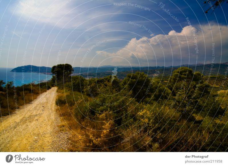 On the road to Shambala Natur Himmel Meer Pflanze Ferien & Urlaub & Reisen ruhig Wolken Ferne Gras Wege & Pfade Landschaft Küste Horizont Sträucher Schönes Wetter Umwelt