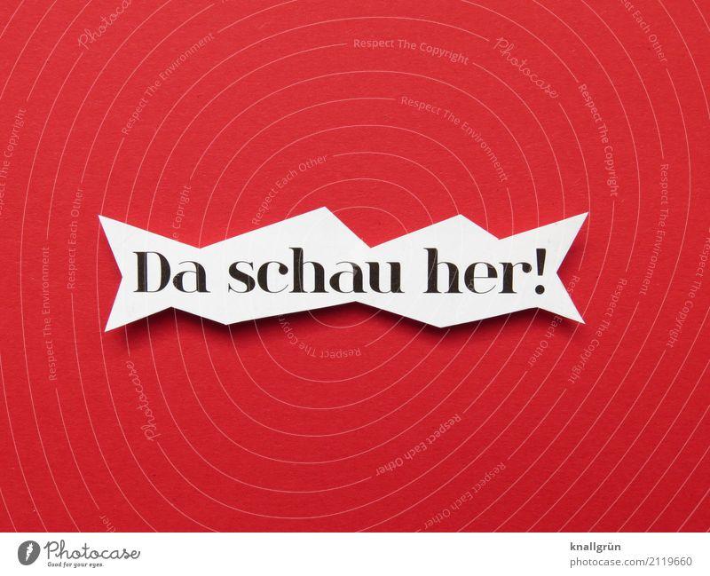 Da schau her! Schriftzeichen Schilder & Markierungen beobachten Kommunizieren Blick eckig Neugier rot schwarz weiß Gefühle Begeisterung Interesse Überraschung