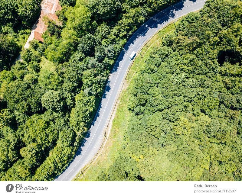 Vogelperspektive der Straße durch Karpaten-Gebirgswald laufend Natur Ferien & Urlaub & Reisen Sommer Farbe schön grün Baum Landschaft Wald Berge u. Gebirge