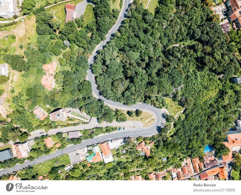 Vogelperspektive der Straße durch Karpaten-Gebirgswald laufend Ferien & Urlaub & Reisen Sommer Berge u. Gebirge Umwelt Natur Landschaft Pflanze Baum Wald