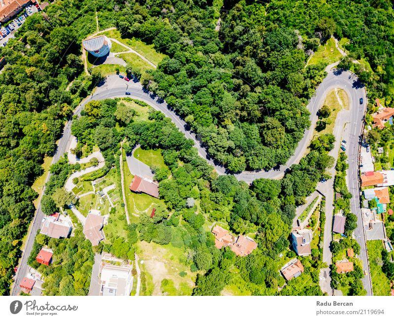 Vogelperspektive der Straße durch Karpaten-Gebirgswald laufend Natur Ferien & Urlaub & Reisen Sommer Stadt Farbe grün Baum Landschaft Ferne Wald