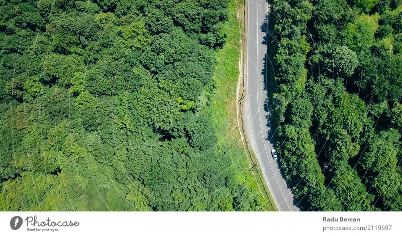 Vogelperspektive der Straße durch Karpaten-Gebirgswald laufend Umwelt Natur Landschaft Sommer Schönes Wetter Baum Wald Berge u. Gebirge Verkehr Flugzeugausblick