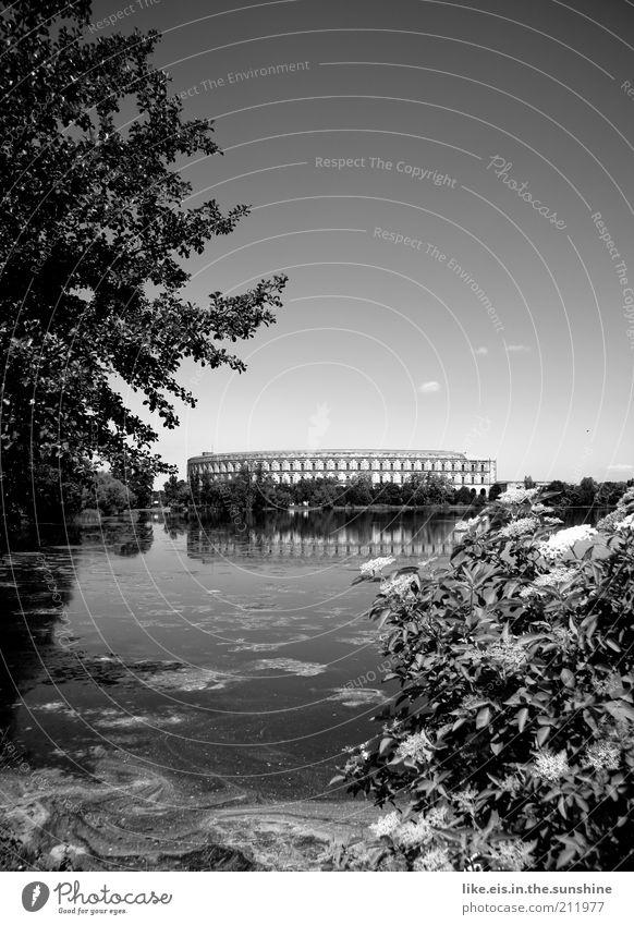 Collosseum? Natur Wasser Baum Pflanze Sommer See Park Landschaft Stimmung Architektur Rom Sträucher Denkmal Vergangenheit Seeufer