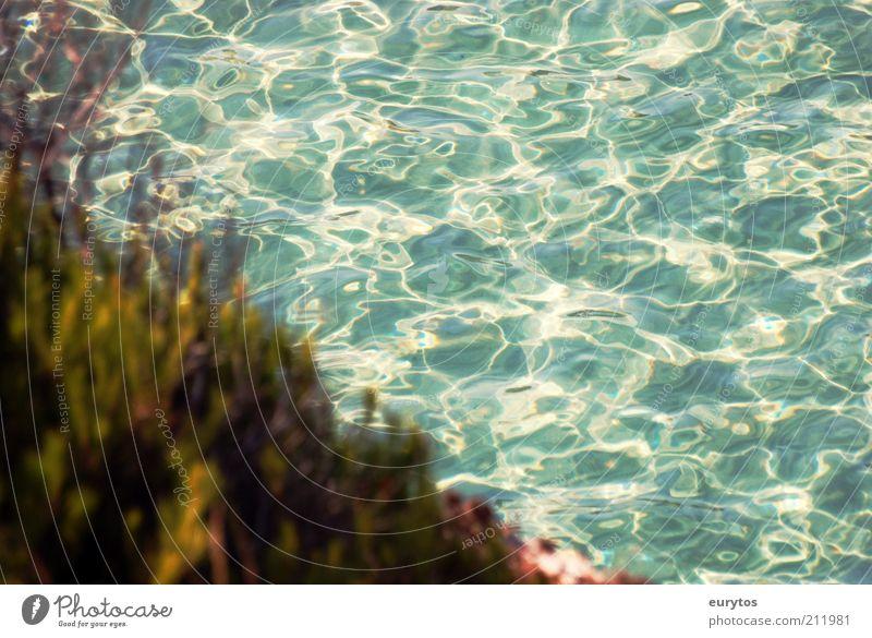 am Meer Umwelt Natur Landschaft Wasser Sommer Klima Wetter Schönes Wetter Küste mediterran Mallorca türkis Farbfoto Außenaufnahme Textfreiraum rechts Tag