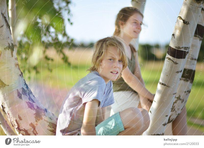 days in june Kind Mensch Natur Jugendliche Sommer Sonne Baum Mädchen Ferne Leben Umwelt Lifestyle Junge Spielen Garten Freiheit