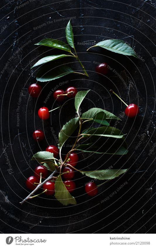 Frische Sauerkirschen auf einer Draufsicht des dunklen Hintergrundes Frucht Vegetarische Ernährung Diät Sommer Tisch Blatt dunkel frisch lecker saftig sauer
