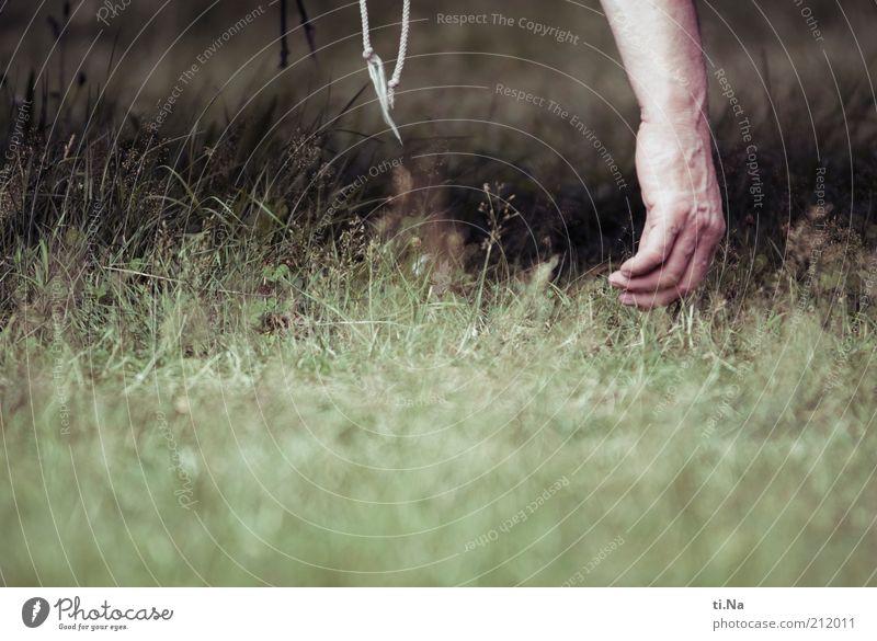 Urlaub Mensch Hand grün Erwachsene Erholung Garten Gras Arme maskulin schlafen Rasen hängen schaukeln