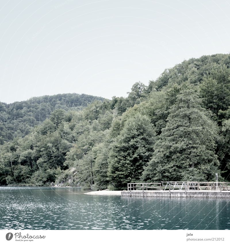 steg Natur Himmel Baum ruhig See Landschaft trist Idylle Steg Seeufer Schönes Wetter Badestelle Erholungsgebiet