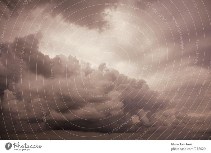 es wird wohl doch regnen ... Umwelt Natur Landschaft Luft Himmel Wolken Horizont Sommer Herbst Klima schlechtes Wetter Unwetter Wind Sturm Regen Gewitter