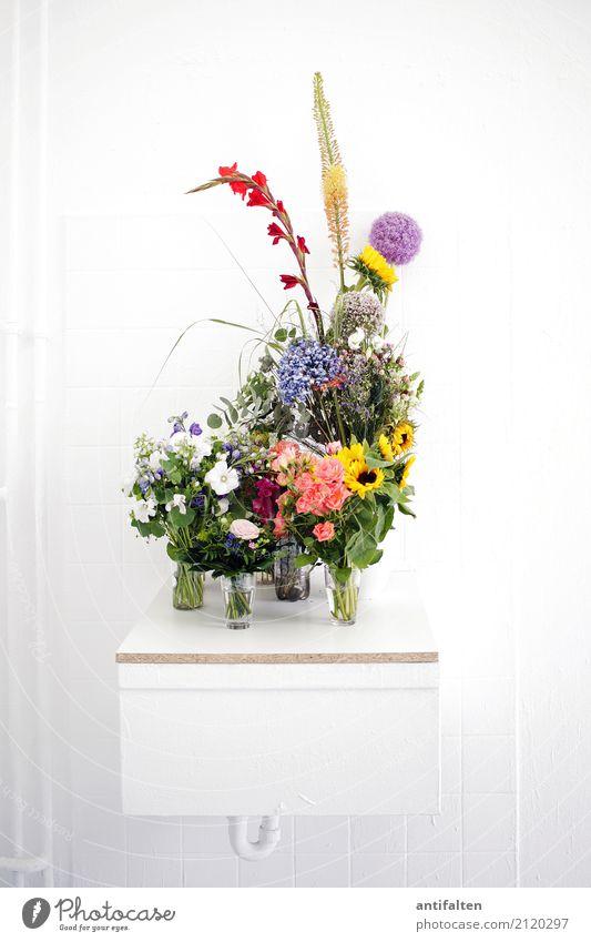 Blumen für den Künstler Pflanze grün weiß Blatt Wand Lifestyle Blüte Innenarchitektur Mauer Kunst Feste & Feiern Deutschland Wohnung Häusliches Leben Raum