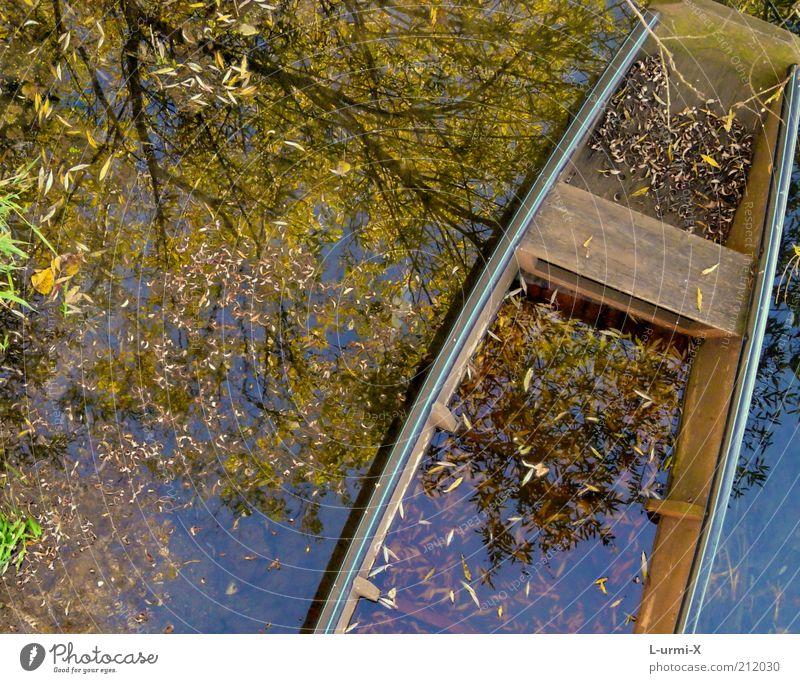 herbstlicher Bootsausflug Wasser Herbst Baum Blatt Seeufer Flussufer Moor Sumpf Teich Bach Bootsfahrt Fischerboot Ruderboot blau braun mehrfarbig gelb träumen