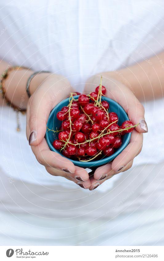 Sommerfrüchte Mensch Natur Jugendliche Junge Frau blau schön weiß rot Hand Freude Gesundheit 18-30 Jahre Lebensmittel Erwachsene