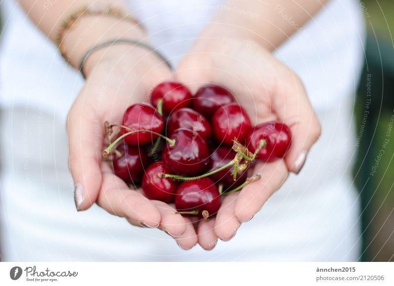 Kirschenliebe Natur Frau festhalten schützen Gesunde Ernährung Speise Essen Foodfotografie Frucht Hand Finger weiß rot lecker Ernte pflücken Stengel grün