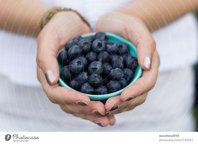 Blaubeeren Sommer Natur Beeren Frucht festhalten Schalen & Schüsseln Ferien & Urlaub & Reisen sammeln Gesunde Ernährung Speise Essen Foodfotografie