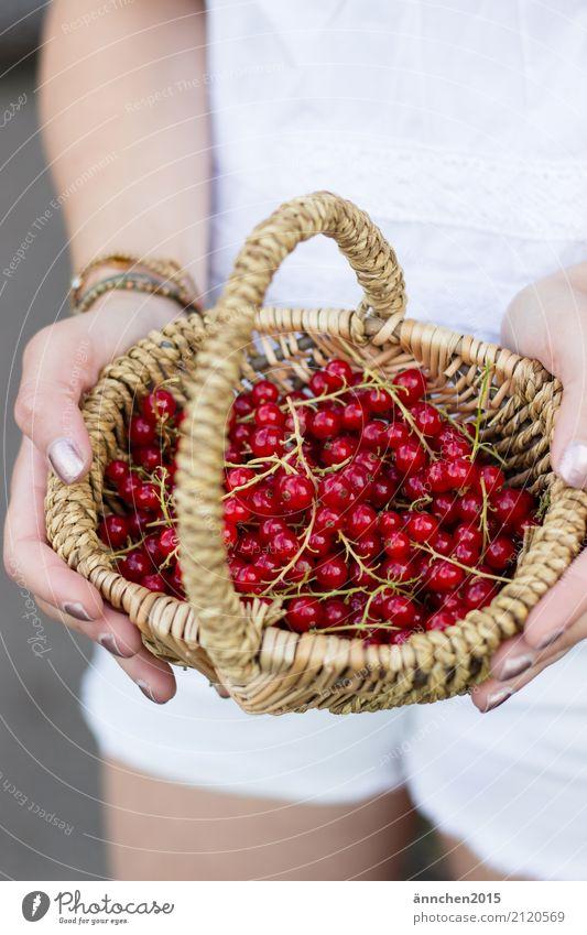 Johannisbeeren I Gesunde Ernährung Speise Essen Foodfotografie Lebensmittel Gesundheit haltend Jugendliche Junge Frau Natur hell Außenaufnahme healty Beeren