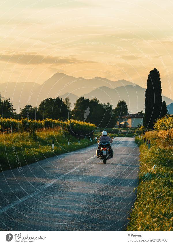 roadbike Mensch Ferien & Urlaub & Reisen Pflanze Sommer Baum Landschaft Erholung Ferne Berge u. Gebirge Straße Wege & Pfade Freiheit Tourismus Freizeit & Hobby