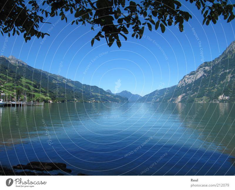 Der Bergsee Natur Wasser blau Sommer ruhig Blatt Berge u. Gebirge See Landschaft Stimmung Horizont Alpen Seeufer Schönes Wetter Symmetrie Blauer Himmel