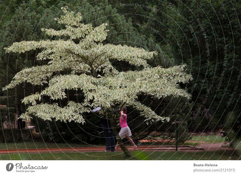 hinterhältig | Golfschläger als Angriffswaffe grün rot Baum Freude Wald Sport Bewegung Tourismus Spielen Freizeit & Hobby Park Kraft Erfolg sportlich