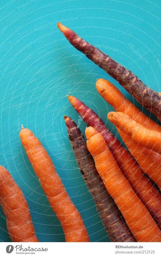 """"""" ... diese möhren wurden also ermordet?"""" """"Ja-"""" Lebensmittel Ernährung Bioprodukte füttern genießen Gesundheit lecker natürlich dünn knackig orange türkis"""