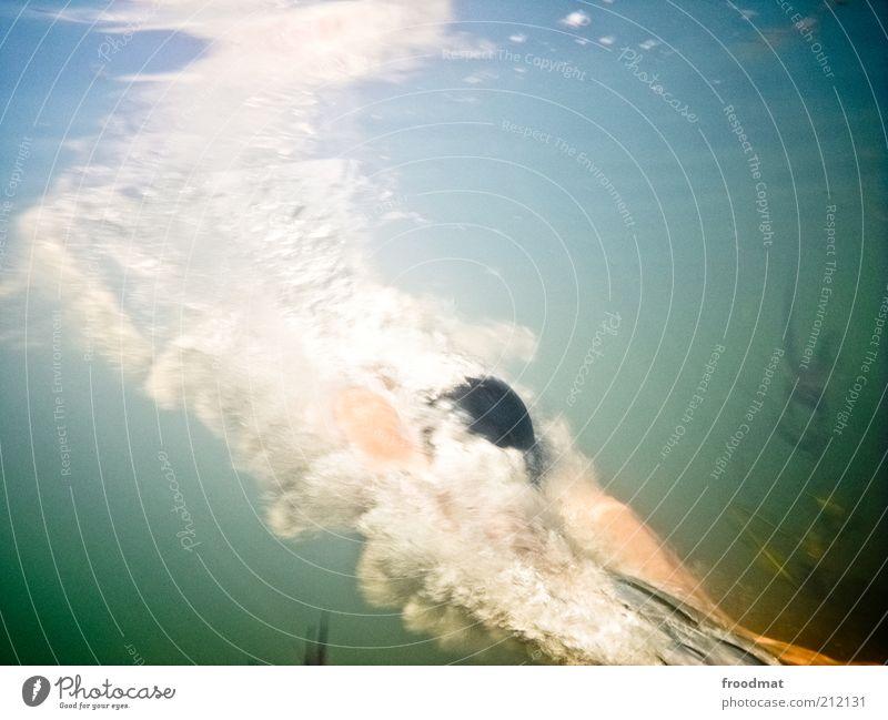 dive in Mensch Mann Natur Wasser Sommer Erwachsene Erholung Leben Umwelt Sport springen See Schwimmen & Baden maskulin Urelemente tauchen