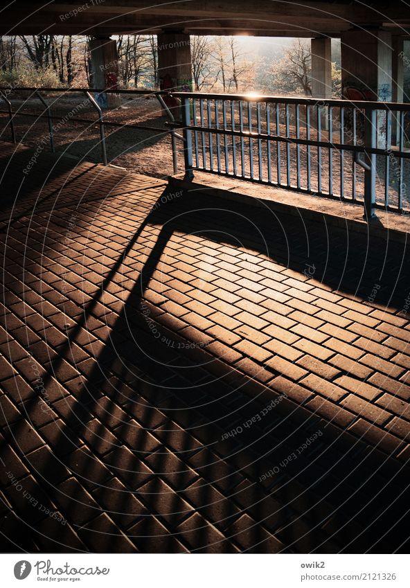 Spreebrückenblues Baum Sträucher Brücke Brückengeländer Säule Brückenpfeiler Bürgersteig Bodenplatten Stein Beton Metall leuchten fest groß standhaft Sicherheit