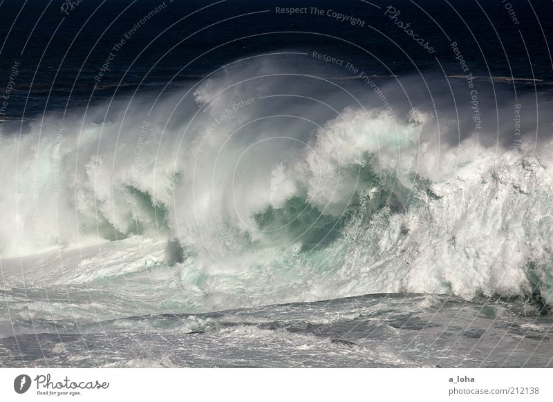 big wave surfing Ferne Natur Urelemente Wasser Sommer Klima Wellen Küste Meer außergewöhnlich bedrohlich Flüssigkeit gigantisch kalt nass Geschwindigkeit Kraft
