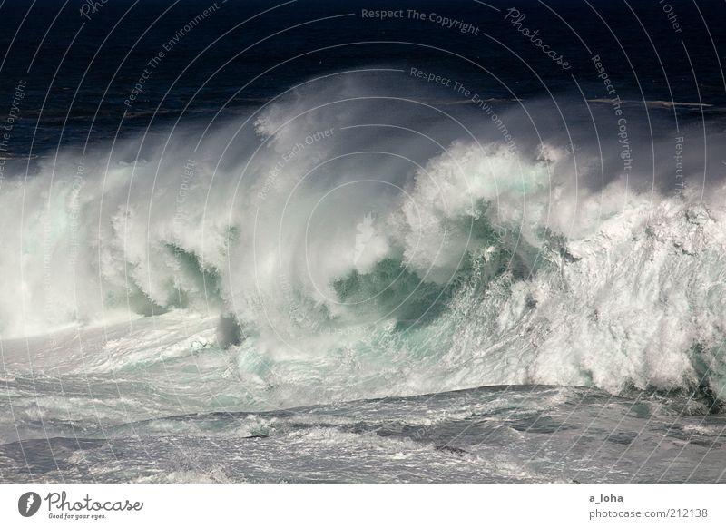 big wave surfing Natur Wasser Sommer Ferien & Urlaub & Reisen Meer Ferne kalt Bewegung Küste Wellen Kraft nass Geschwindigkeit Klima bedrohlich Macht