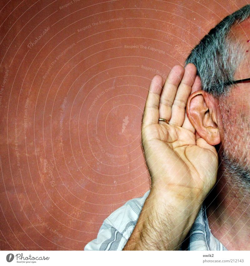 Wie meinen? Mensch Mann Hand ruhig Senior Farbe Wand Haare & Frisuren Kopf Erwachsene maskulin Ohr Neugier Konzentration hören Bart
