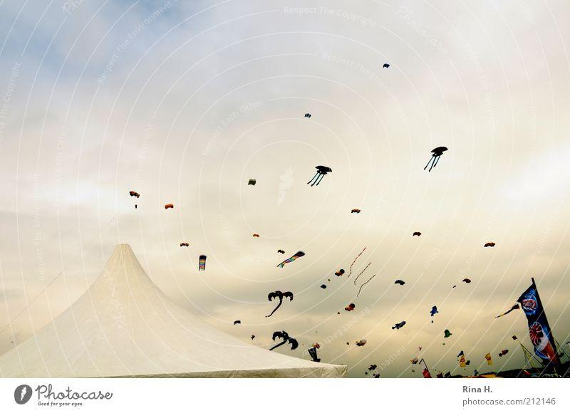Herbstboten Freude Wolken Luft Wind Wetter fliegen Freizeit & Hobby Sturm Veranstaltung Lenkdrachen Zelt Umwelt Natur fliegend