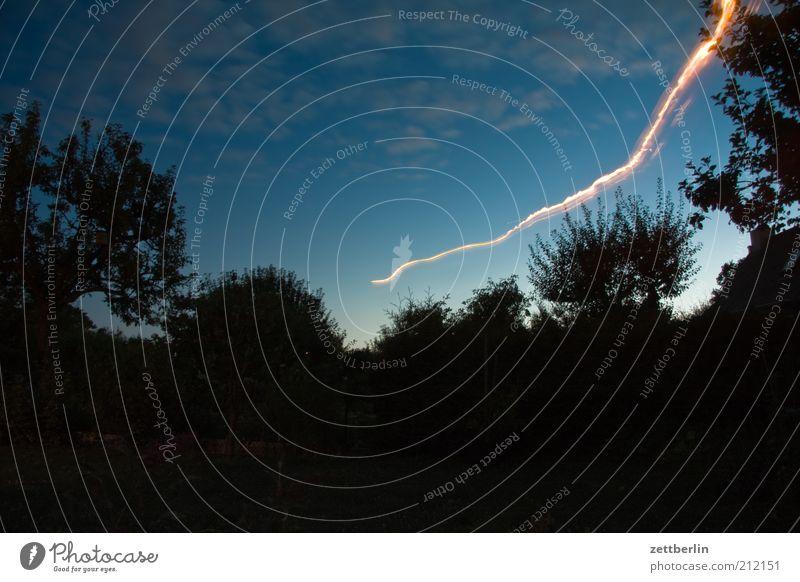 UFO Umwelt Natur Landschaft Nachthimmel Schönes Wetter Baum Garten Park Linie träumen einzigartig Geschwindigkeit Bewegung Dynamik Illumination Leuchtspur