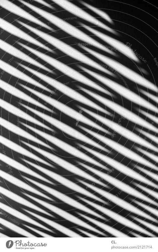 zickzack Wand Mauer Linie ästhetisch Stress eckig Präzision komplex Schattenspiel Zickzack