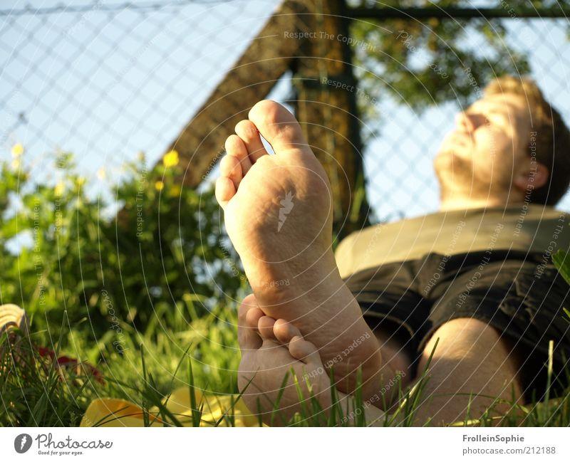 Sonnenfußbad Mensch Ferien & Urlaub & Reisen Sommer ruhig Erwachsene Erholung Wiese Freiheit Wärme Frühling Fuß Zufriedenheit natürlich maskulin liegen Pause