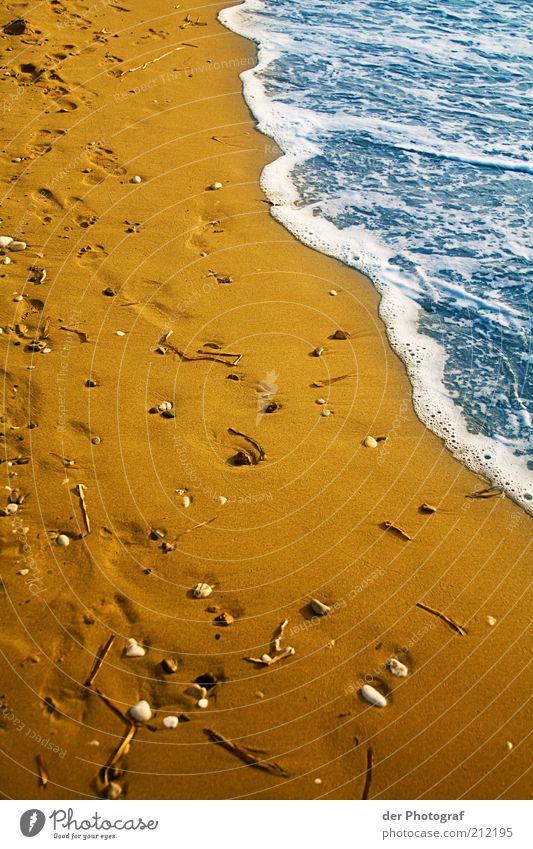 Spuren im Sand Wasser Meer Sommer Strand Ferien & Urlaub & Reisen Küste nass Fußspur Muschel