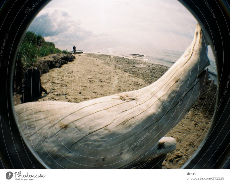Ein Plätzchen für mein Schätzchen Wasser Baum Meer Sommer Strand Ferne Tod Holz Sand Landschaft Küste Wellen Horizont Spaziergang liegen Vergänglichkeit
