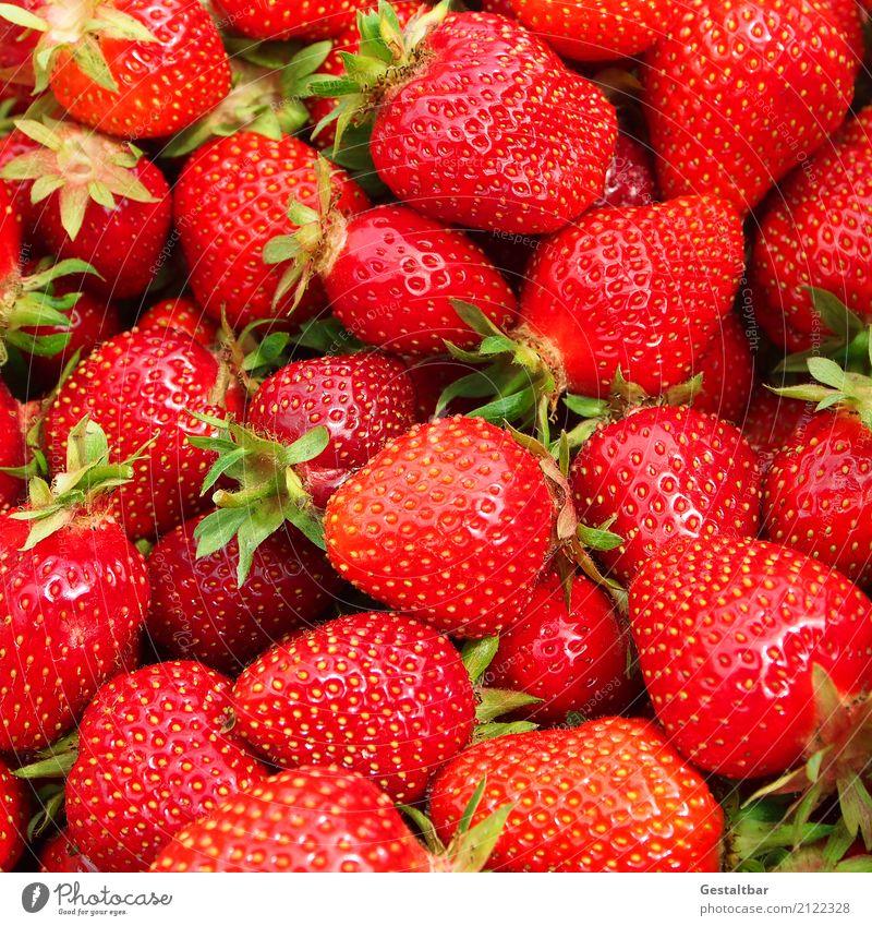 Frisch Fom Feld Lebensmittel Frucht Natur Essen genießen frisch Gesundheit lecker saftig süß grün rot Farbfoto Außenaufnahme Nahaufnahme Detailaufnahme